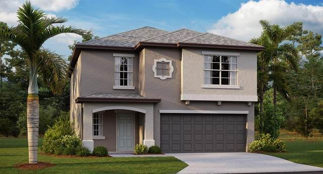 13345 Willow Bluestar Loop, Riverview, FL 33579 (MLS #T3272353) :: Frankenstein Home Team