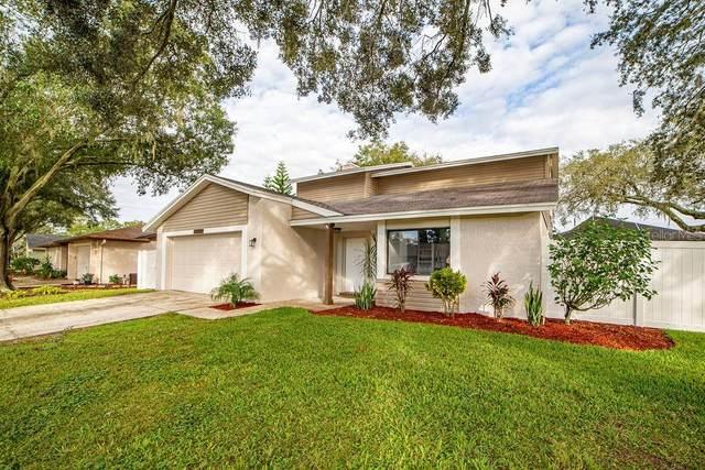 1222 Callista Avenue, Valrico, FL 33596 (MLS #T3272366) :: Frankenstein Home Team