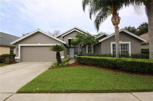 5318 Cottonwood Tree Circle, Valrico, FL 33596 (MLS #T3272371) :: Bridge Realty Group