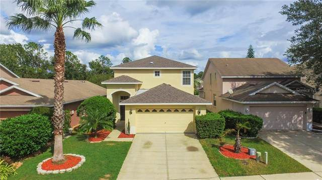 7932 Endless Summer Court, Land O Lakes, FL 34637 (MLS #T3272374) :: Premium Properties Real Estate Services
