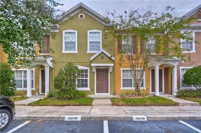 6909 Rock Springs Way, Tampa, FL 33625 (MLS #T3272384) :: Frankenstein Home Team