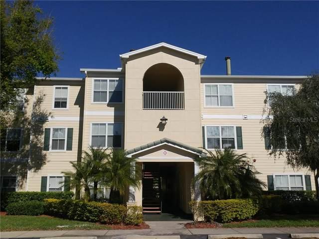 18109 Bridle Bit Lane #18109, Tampa, FL 33647 (MLS #T3272385) :: MavRealty
