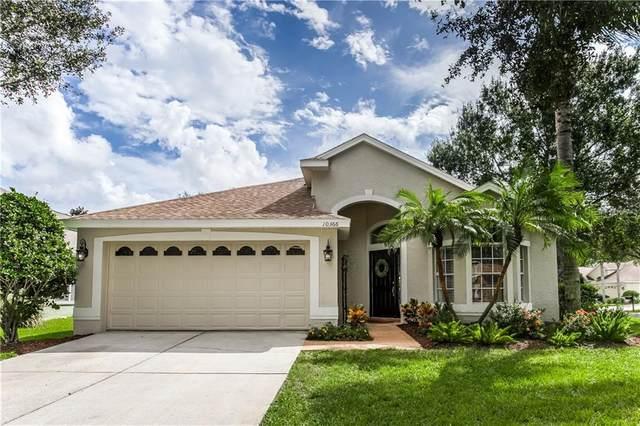 10366 Lightner Bridge Drive, Tampa, FL 33626 (MLS #T3272430) :: Frankenstein Home Team
