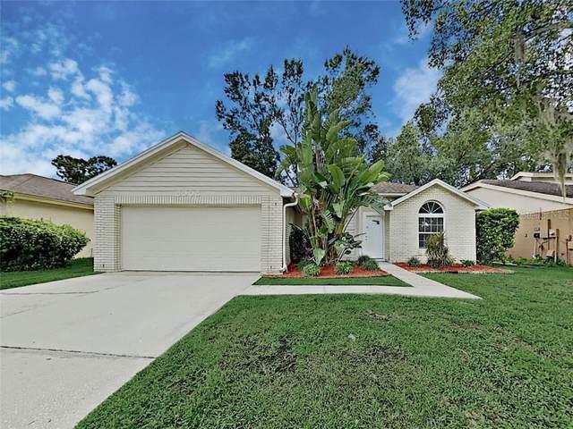 Tampa, FL 33626 :: Team Bohannon Keller Williams, Tampa Properties