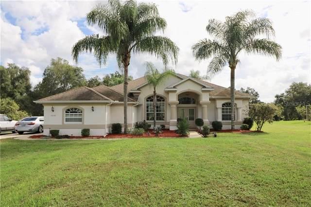 10184 Wallien Drive, Brooksville, FL 34601 (MLS #T3272479) :: The Duncan Duo Team