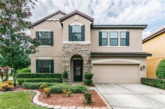 8219 Dunham Station Drive, Tampa, FL 33647 (MLS #T3272524) :: Team Bohannon Keller Williams, Tampa Properties