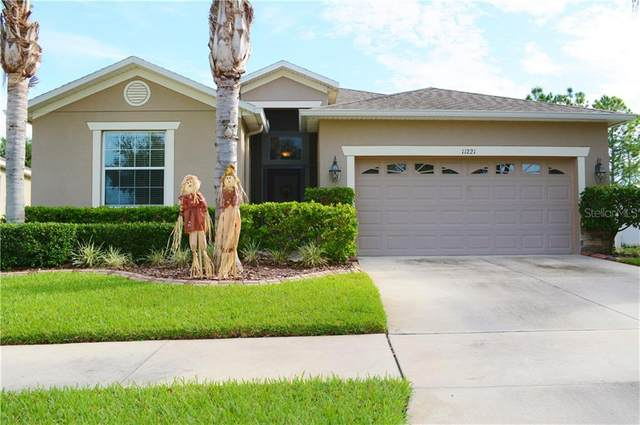 11221 Flora Springs Drive, Riverview, FL 33579 (MLS #T3272542) :: The Brenda Wade Team
