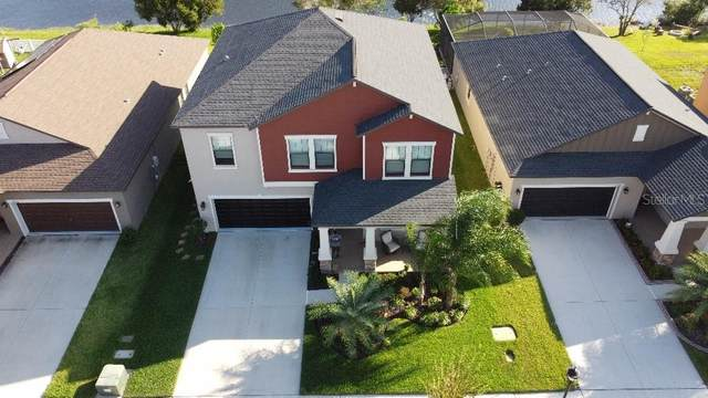 11716 Winterset Cove Drive, Riverview, FL 33579 (MLS #T3272576) :: The Brenda Wade Team