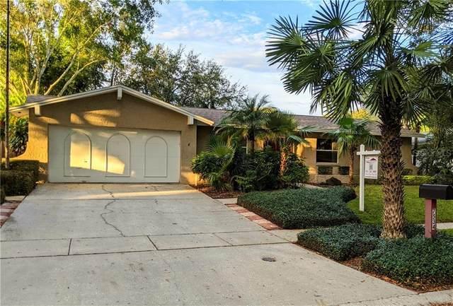 7534 Meadow Drive, Tampa, FL 33634 (MLS #T3272580) :: MavRealty