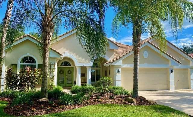 17834 Arbor Greene Drive, Tampa, FL 33647 (MLS #T3272615) :: Cartwright Realty