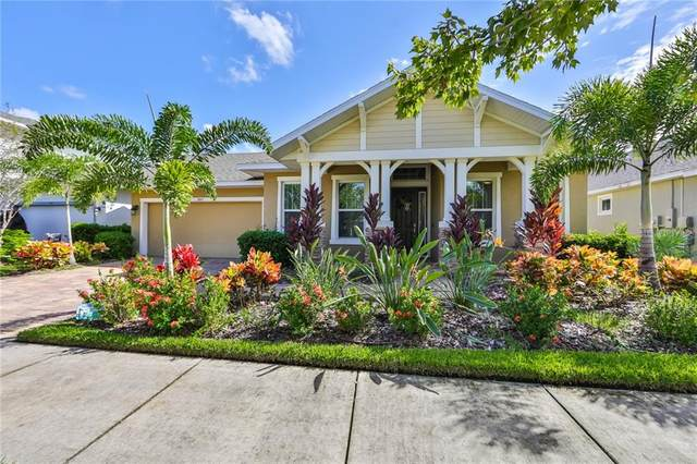 7005 Artesian Court, Apollo Beach, FL 33572 (MLS #T3272626) :: The Paxton Group