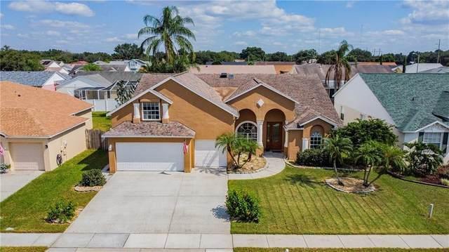 9816 La Rita Place, Riverview, FL 33569 (MLS #T3272630) :: Armel Real Estate