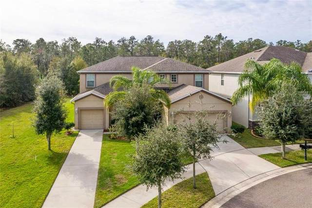 12133 Streambed Drive, Riverview, FL 33579 (MLS #T3272640) :: The Paxton Group
