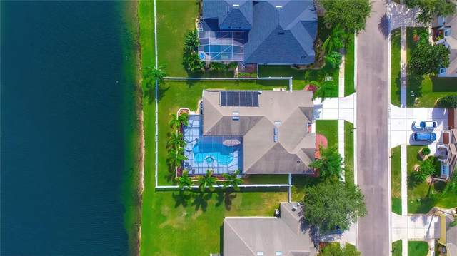 5104 Alderbrook Place, Land O Lakes, FL 34638 (MLS #T3272687) :: Cartwright Realty