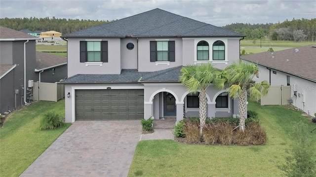 28793 Lucero Lane, Wesley Chapel, FL 33543 (MLS #T3272723) :: RE/MAX Premier Properties