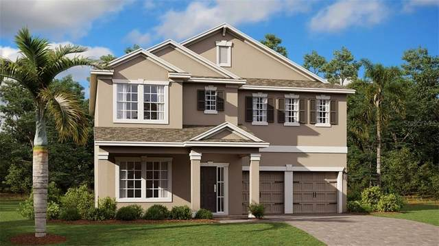 879 Panical Drive, Apopka, FL 32703 (MLS #T3272787) :: Young Real Estate
