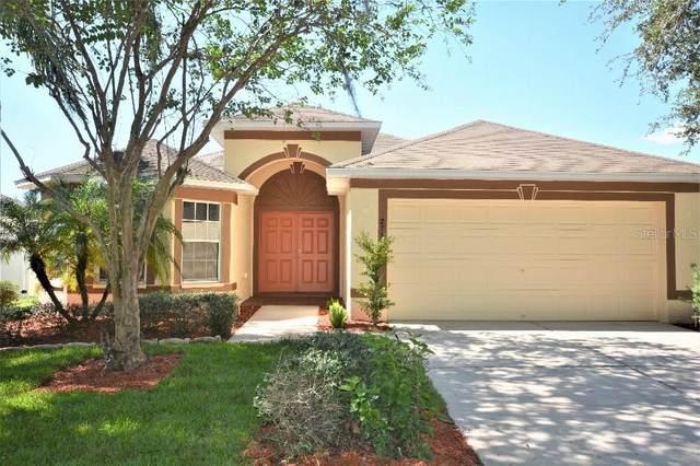 2730 Buckhorn Preserve Boulevard, Valrico, FL 33596 (MLS #T3272795) :: Pepine Realty