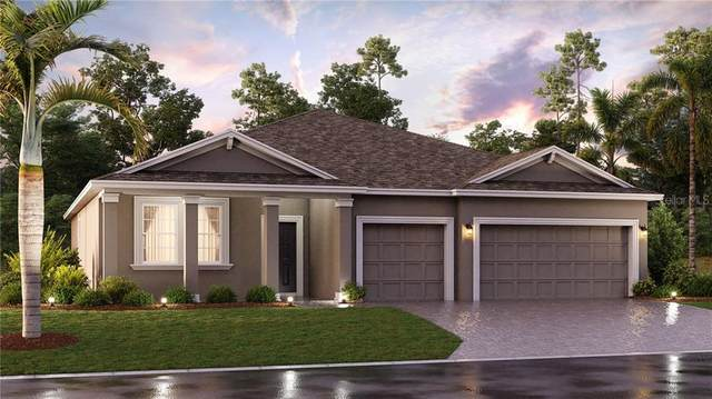 865 Carmillion Court, Groveland, FL 34736 (MLS #T3272801) :: The Robertson Real Estate Group
