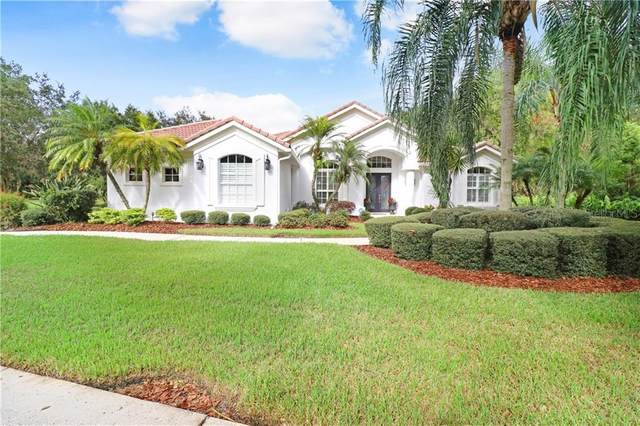 10214 Estuary Drive, Tampa, FL 33647 (MLS #T3272811) :: Your Florida House Team