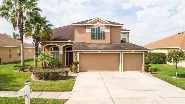 22703 Killington Boulevard, Land O Lakes, FL 34639 (MLS #T3272839) :: Icon Premium Realty