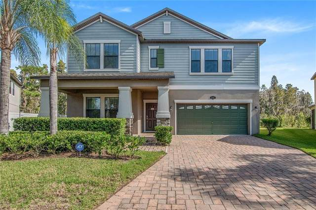 10707 Pegasus Valley Court, Tampa, FL 33647 (MLS #T3272840) :: Realty Executives Mid Florida