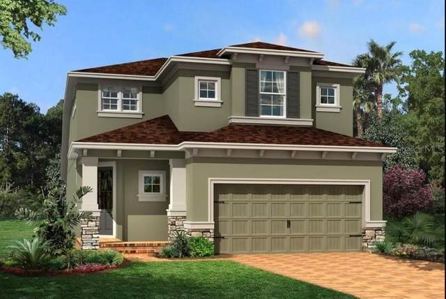19260 Old Spanish Road, Tampa, FL 33647 (MLS #T3272844) :: Realty Executives Mid Florida