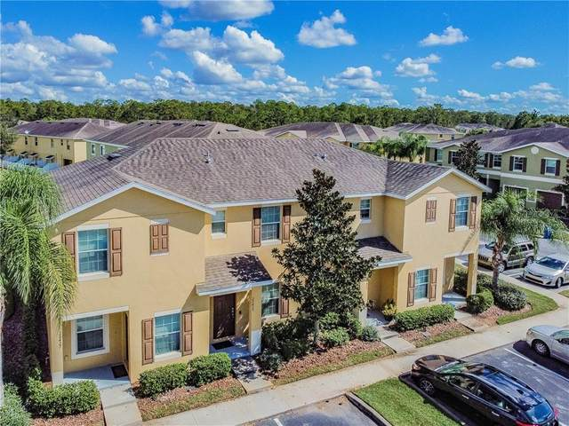 20425 Needletree Drive, Tampa, FL 33647 (MLS #T3272848) :: The Robertson Real Estate Group