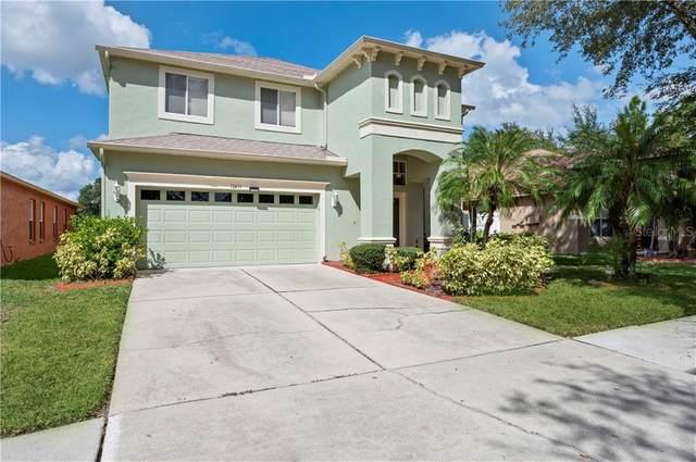 10411 Lucaya Drive, Tampa, FL 33647 (MLS #T3272880) :: Cartwright Realty