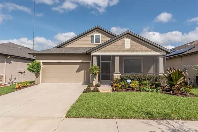 12206 Creek Preserve Drive, Riverview, FL 33579 (MLS #T3272881) :: The Robertson Real Estate Group
