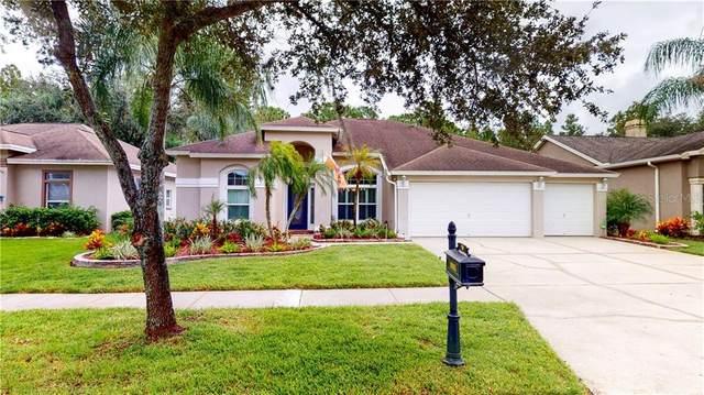 9805 Woodbay Drive, Tampa, FL 33626 (MLS #T3272893) :: Cartwright Realty