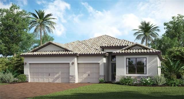 15725 White Linen Drive, Lakewood Ranch, FL 34211 (MLS #T3272982) :: Pepine Realty