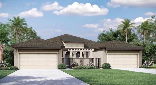 249 Villa Luna Lane, Lutz, FL 33549 (MLS #T3272985) :: Armel Real Estate