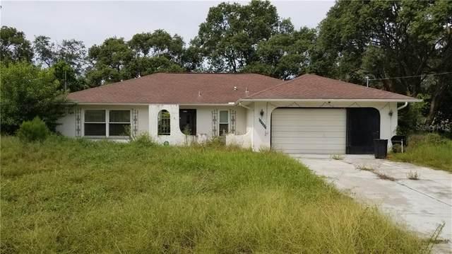 10307 Musa Road, Spring Hill, FL 34608 (MLS #T3272987) :: RE/MAX Premier Properties