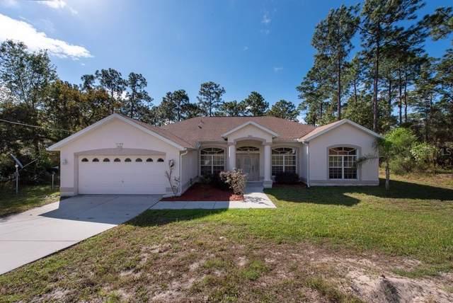 11168 Wood Owl Avenue, Weeki Wachee, FL 34614 (MLS #T3272999) :: RE/MAX Premier Properties