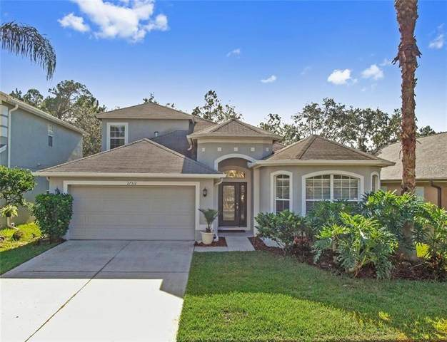 27312 Edenfield Drive, Wesley Chapel, FL 33544 (MLS #T3273009) :: Team Bohannon Keller Williams, Tampa Properties