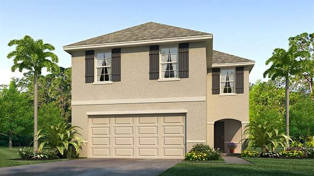589 Olive Conch Street, Ruskin, FL 33570 (MLS #T3273036) :: Alpha Equity Team