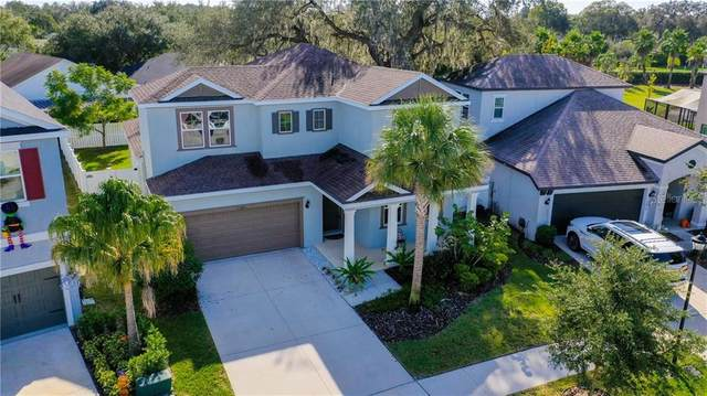 13821 Fairway Bunker Drive, Tampa, FL 33626 (MLS #T3273042) :: Griffin Group