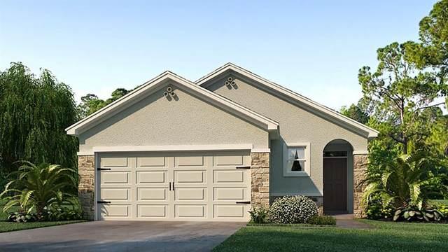 5799 Cape Primrose Drive, Sarasota, FL 34232 (MLS #T3273045) :: Sarasota Gulf Coast Realtors