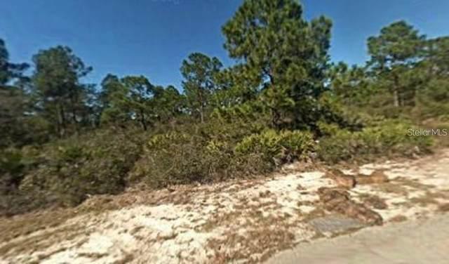 1060 Cordova Street, Lake Placid, FL 33852 (MLS #T3273064) :: Team Borham at Keller Williams Realty