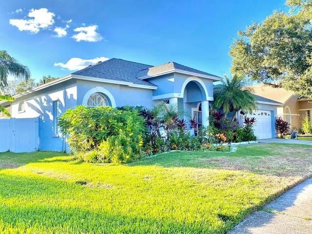 Tampa, FL 33647 :: Cartwright Realty