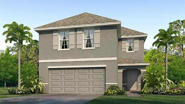 613 Olive Conch Street, Ruskin, FL 33570 (MLS #T3273101) :: Alpha Equity Team