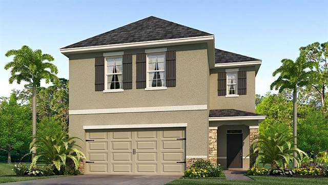 3800 Golden Oriole Parkway, Sarasota, FL 34232 (MLS #T3273141) :: The Figueroa Team