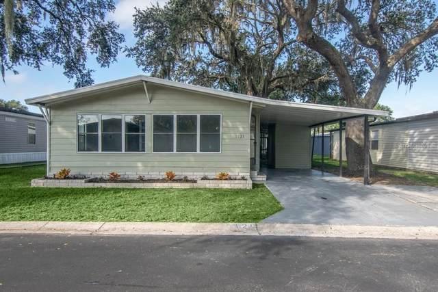 3121 Piney Bark Drive, Wesley Chapel, FL 33543 (MLS #T3273201) :: Cartwright Realty
