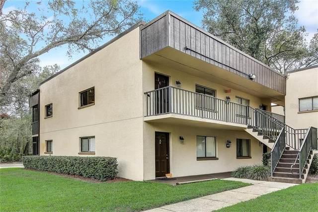 11724 Raintree Lake Lane C, Temple Terrace, FL 33617 (MLS #T3273213) :: Your Florida House Team