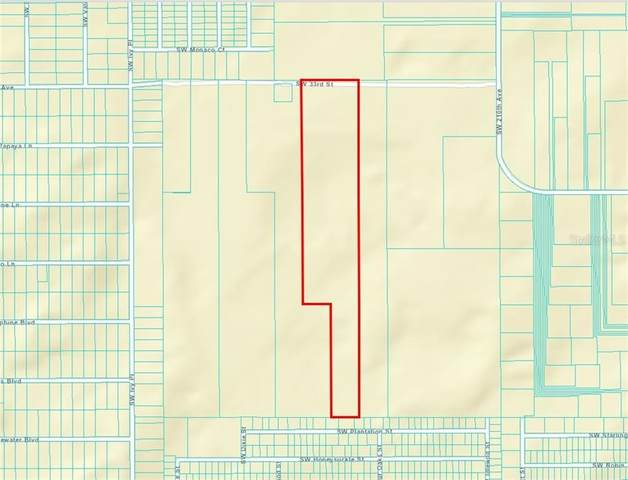 5043 33RD Street, Dunnellon, FL 34431 (MLS #T3273223) :: Griffin Group