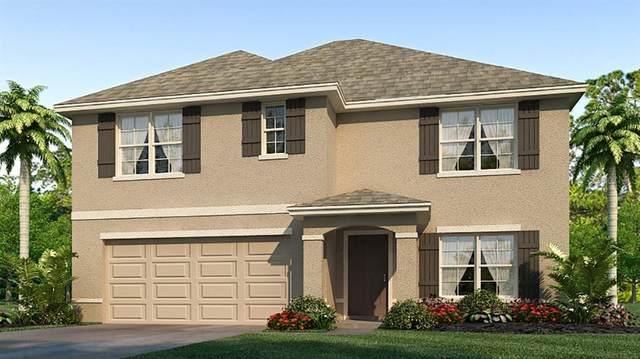 1103 Tidal Rock Avenue, Ruskin, FL 33570 (MLS #T3273249) :: Real Estate Chicks