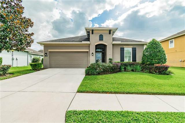 7507 Atwood Drive, Wesley Chapel, FL 33545 (MLS #T3273289) :: Real Estate Chicks