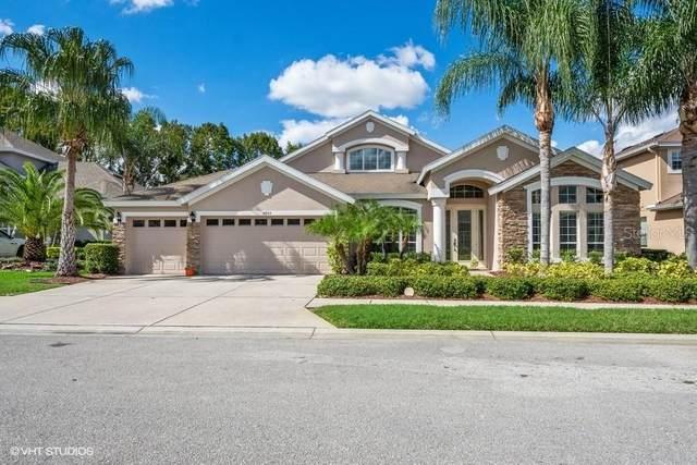 14845 Man O War Drive, Odessa, FL 33556 (MLS #T3273317) :: Real Estate Chicks