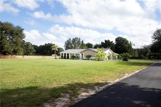 102 Lenna Avenue, Seffner, FL 33584 (MLS #T3273321) :: Your Florida House Team