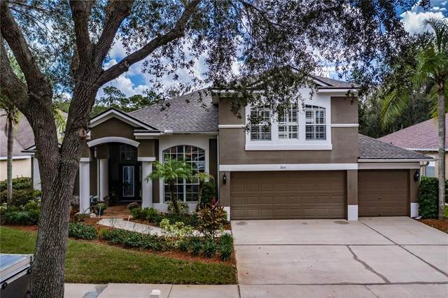 3614 Cordgrass Drive, Valrico, FL 33596 (MLS #T3273327) :: Premier Home Experts